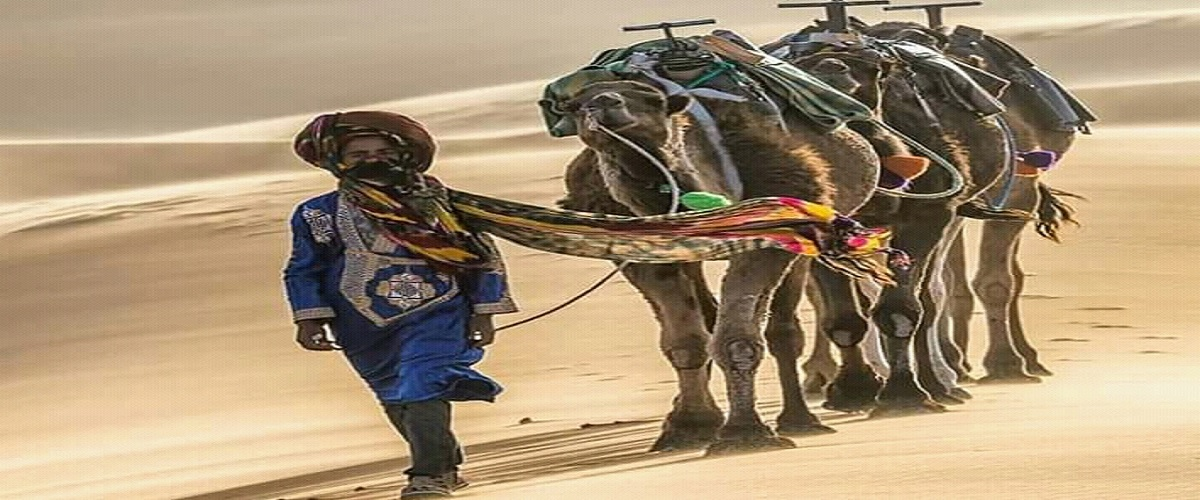 Camel Trekking 2 nights in the desert Erg Chebbi