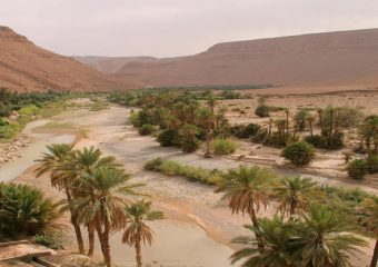4 Day Trip Marrakech High Atlas Erg chebbi Fez