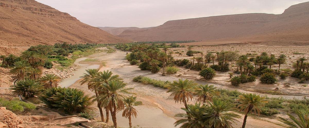 4 Day Trip Marrakech -High Atlas - Erg chebbi - Fez